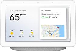 nest Google Assistant Home Hub